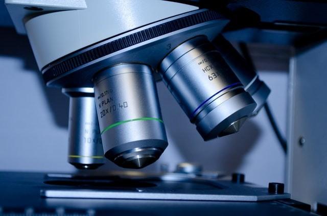 בדיקה גנטית תסמונת יללת החתול